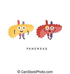 ilustración, malsano, infographic, sano, páncreas, contra