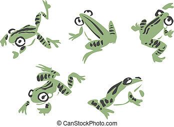 ilustración, rana