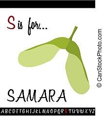 ilustración, samara, s, carta, capital, caricatura