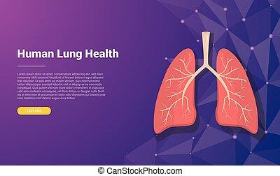 ilustración, vector, libre, diseño, espacio, pulmón, plantilla, bandera, humano, -, texto