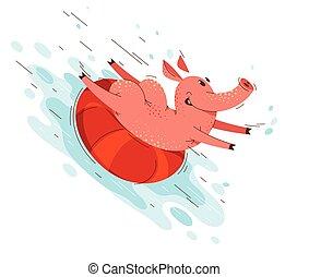 ilustracja, rysunek, lato, plaża, cieszący się, zabawny, park, szczęśliwy, świnia, woda, używając, wektor, świnia, drawing., zwierzę, litera, albo, ring, ślizga się, zabawa, aqua, morze, działalność