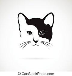image, chat, arrière-plan., vecteur, conception, visage ...
