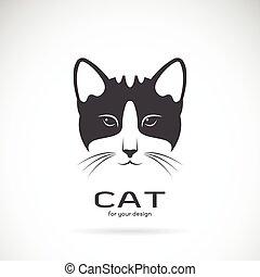 image, chat, vecteur, conception, fond, visage blanc