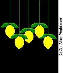 image, citron