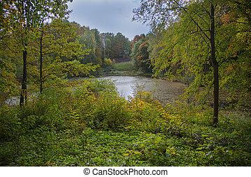 image, feuilles, arbres, lac, coloré