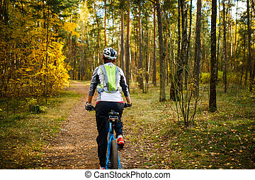 Image from back of girl in helmet on bicycle in autumn...