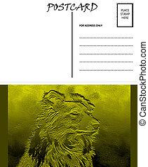 image, gabarit, vide, colley, vide, carte postale, chien