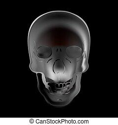 Image illustration fire skull