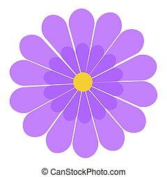 image, isolé, fleur