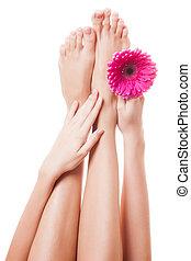 image, kvinde, oppe, baggrund, isoleret, lukke, feet., bar, hvid
