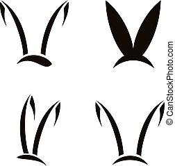 image, lapin blanc, fond