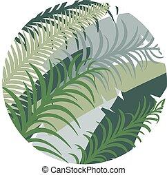 image., leaves., tropicale, vettore, palma, fondo, rotondo