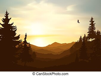 Image nature background