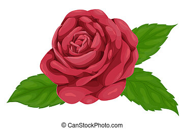 image of a beautiful pink rose with leaves isolated on white background, imitation of watercolors