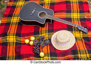 black guitar with grapes and apples lies on a red plaid in the park