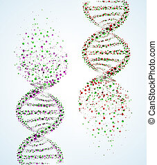DNA molecule - Image of a DNA molecule, showing its ...