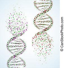 Image of a DNA molecule, showing its destruction.