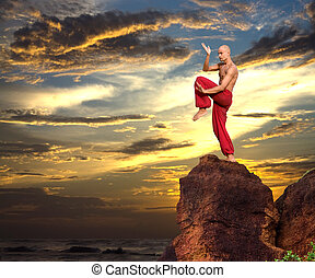 Image of a Martial Artist on a Rock