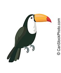Image of a toucan vector