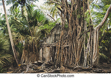 Image Of Abandoned Old House At Ross Island, Shot From Ross Island
