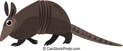 Image of armadillo, vector or color illustration. - It is a ...