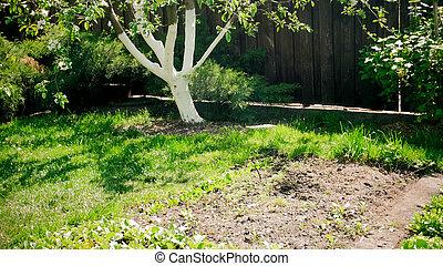 Image of beautiful backyard garden with fertile soil