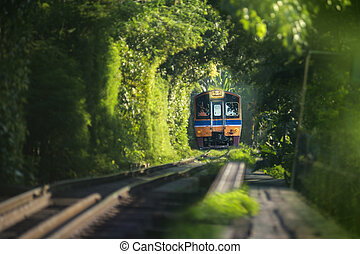 Image of blurry train running through natural tunnel tree