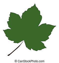 Image of cartoon maple leaf . Vector illustration isolated on white background.