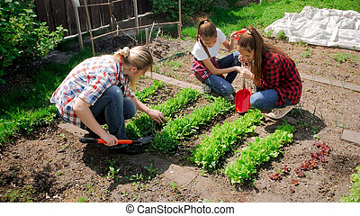 Image of caucasian family working in backyard garden