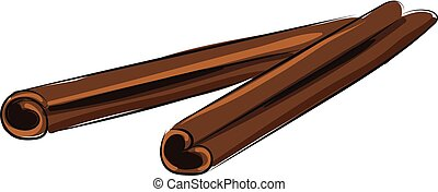 Image of cinnamon, vector or color illustration.