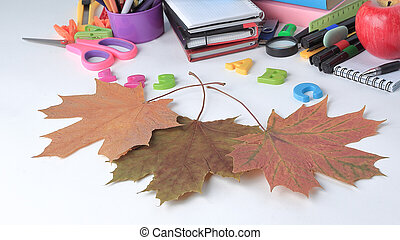 image of colorful school supplies on white background