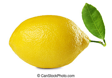 fresh lemon - image of fresh lemon with leaf isolated on...
