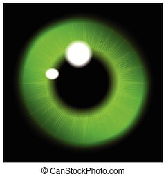 Image of green   pupil of the eye, eye ball, iris eye. Realistic vector illustration isolated on black background.
