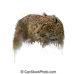 Image of Leopard watercolor