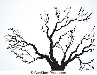 image of mighty tree with bare branches