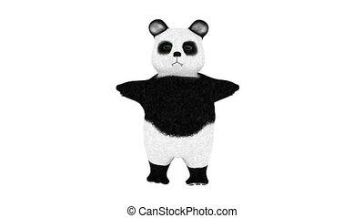 panda - image of panda