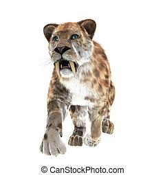 saber-toothed tiger - image of saber-toothed tiger
