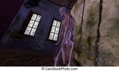 skeleton - image of skeleton