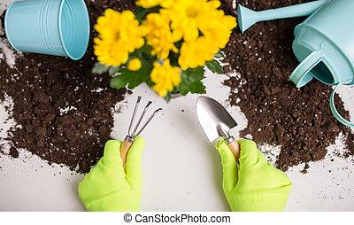 Image of soil, watering can, flower pot, shovel, rake