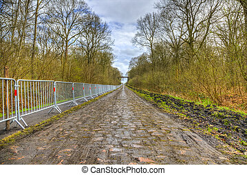 Pave d'Arenberg - Image of the famous cobblestone road from ...