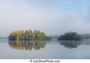 Image of tree island on the foggy lake at morning