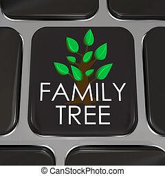 image, rechercher, symboliser, clã©, famille, base données, ...