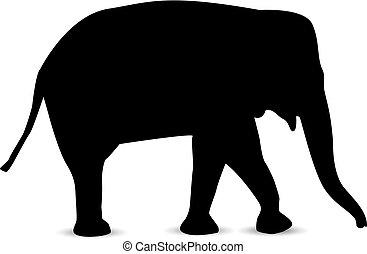 Silhouette of elephant.