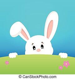 image, thème, 2, observer, lapin pâques