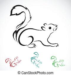 image, vecteur, écureuil