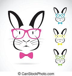 image, vecteur, lapins, usure, lunettes
