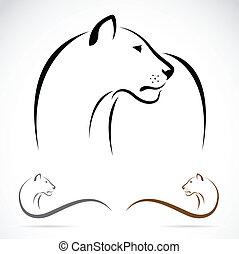 image, vecteur, lion, femme