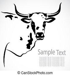 image, vecteur, vache