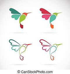 imagem, fundo, vetorial, desenho, branca, símbolo, logotipo, hummingbird