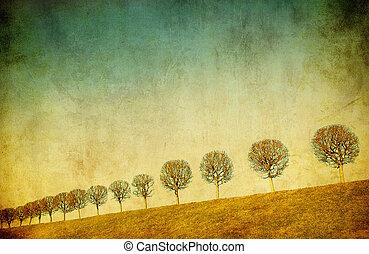 imagem, grunge, árvores